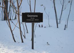 Winter_Garden_Jan_Baracz_05